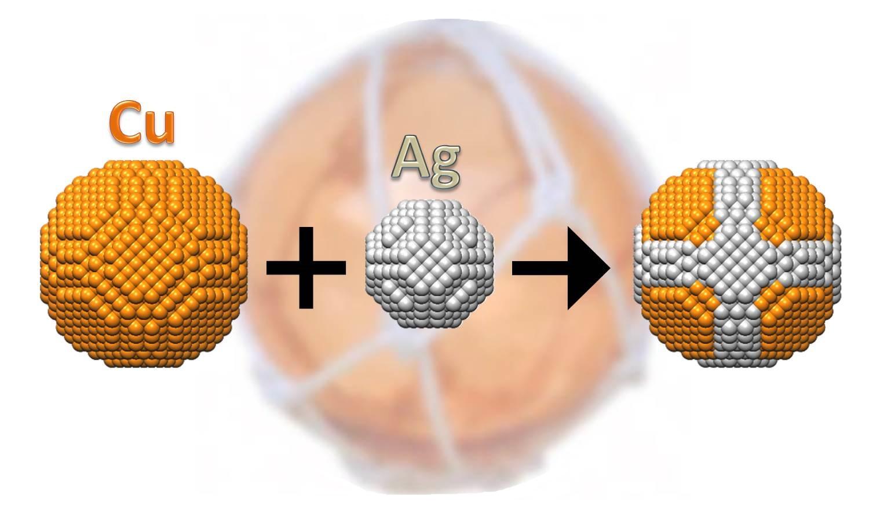 「浮き球」ナノ粒子のイメージ図