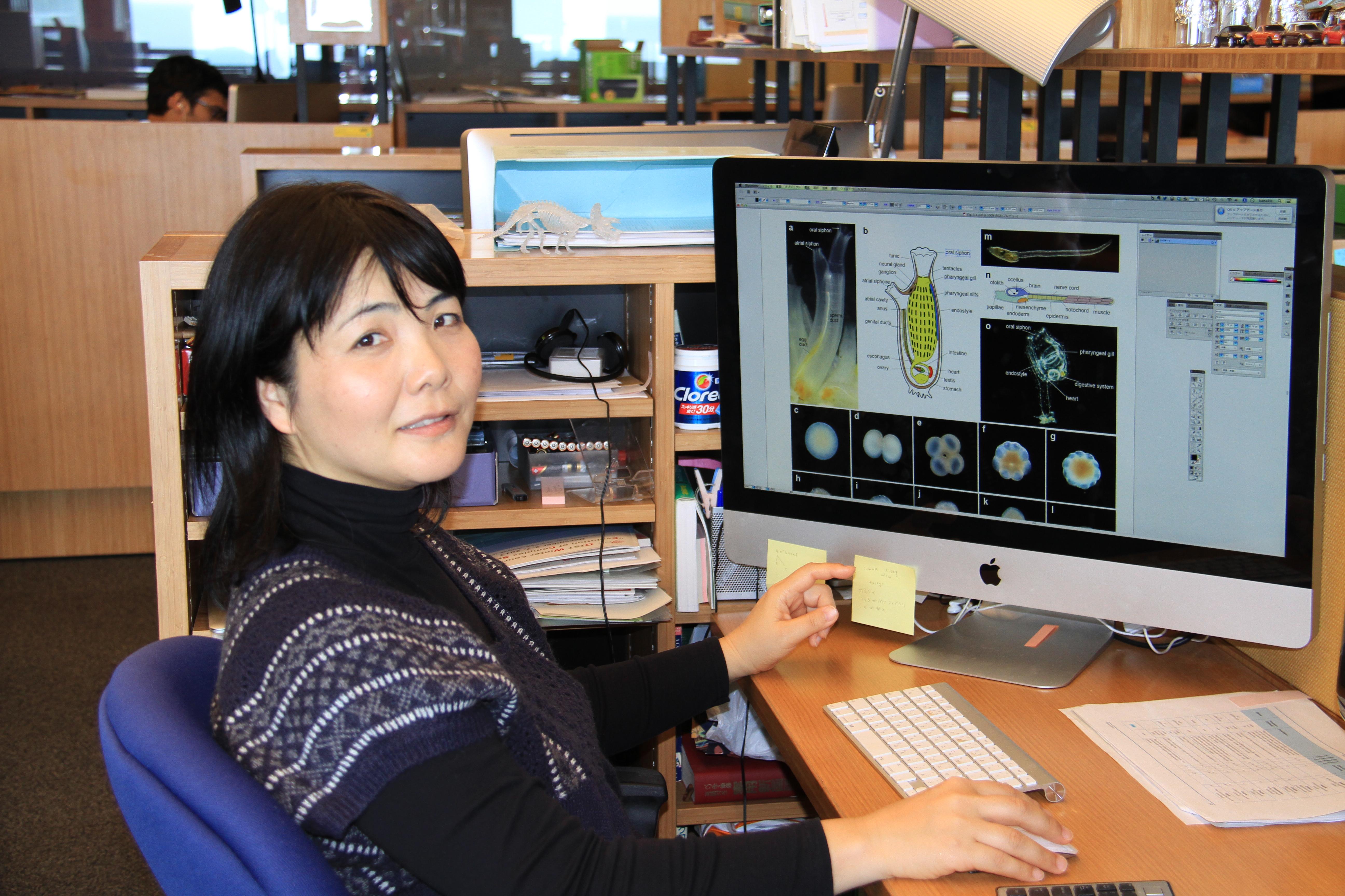 Kanako Hisata