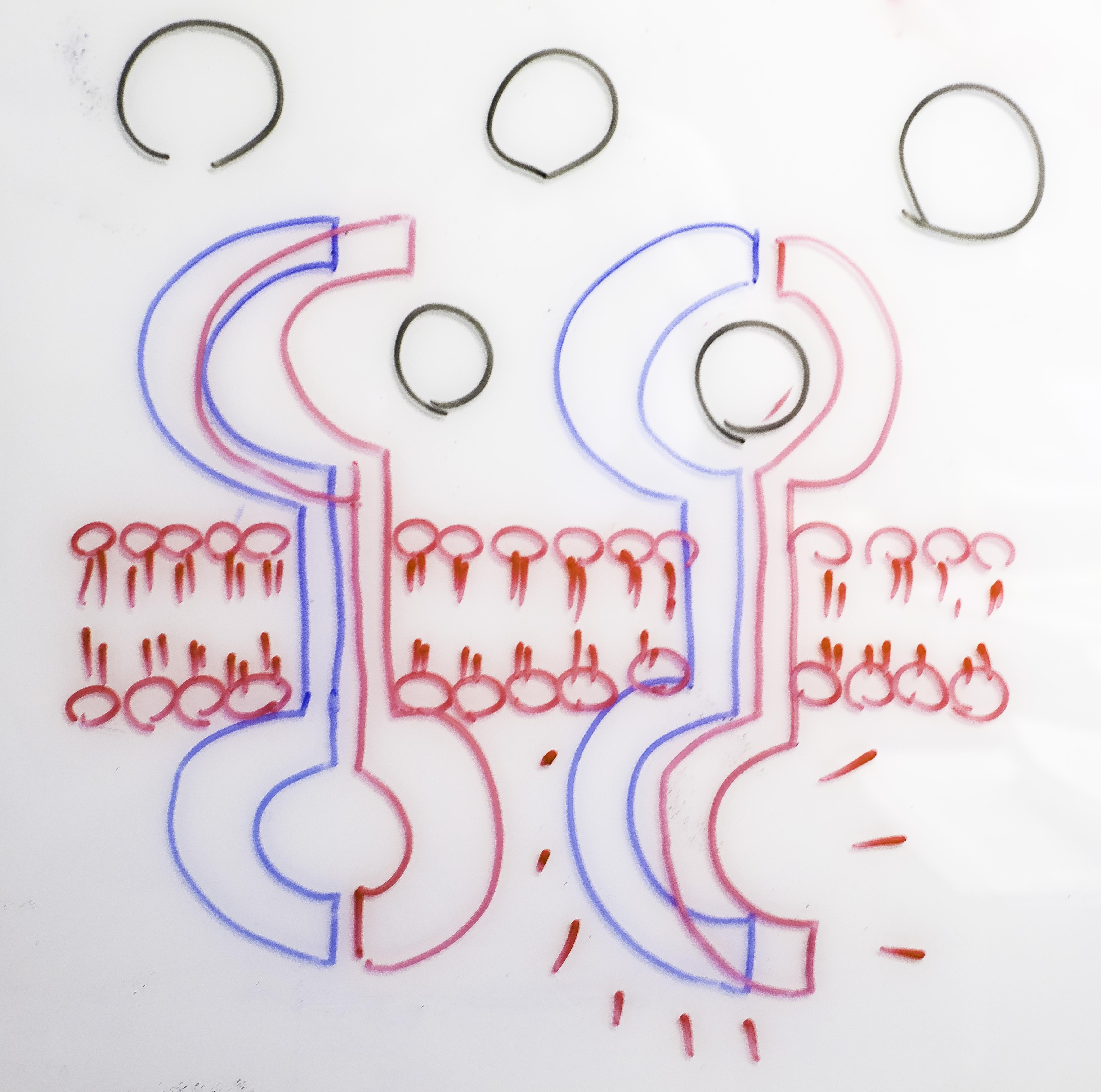 "The original sketch illustrating the ""rotation model"""