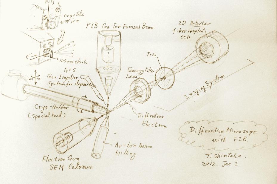 新竹積教授による電子顕微鏡のスケッチ