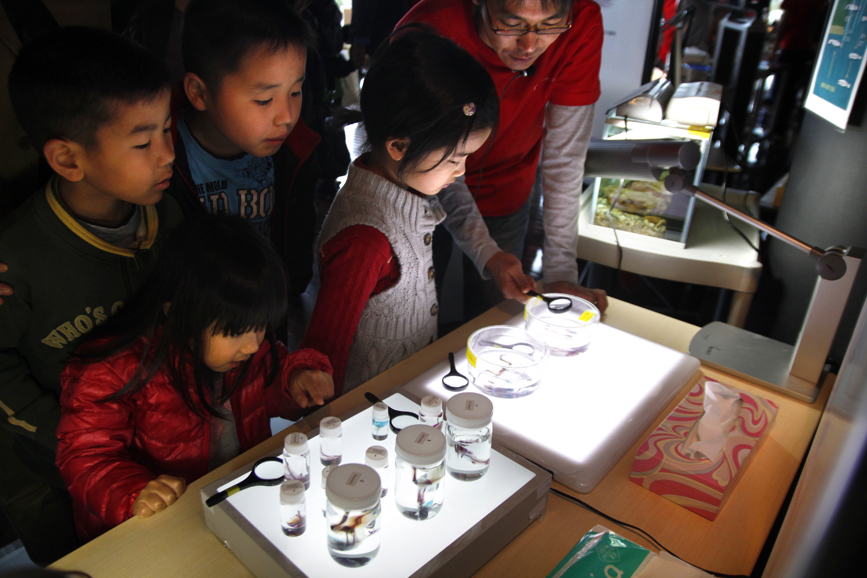 Children at Open Campus 2013