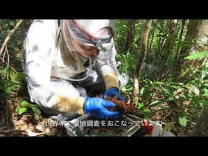 Biodiversity and Biocomplexity Unit Introduction Video 生物多様性・複雑性研究ユニット紹介ビデオ