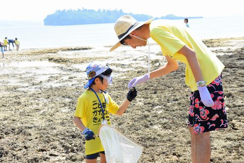 Child and teacher looking at animals at low tide