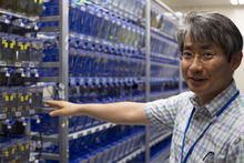 Professor Ichiro Masai in the Zebrafish Lab