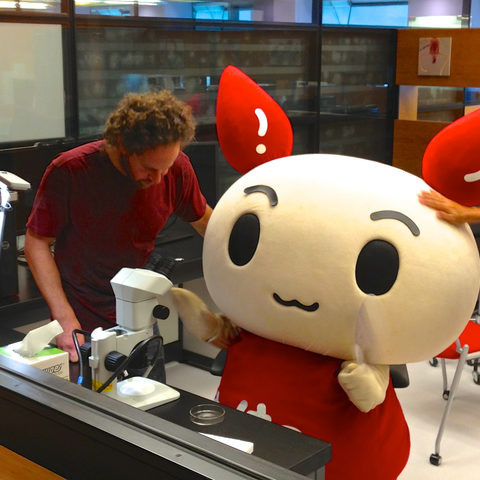 Kenketsu-chan recruits blood donors (June 19, 2013)