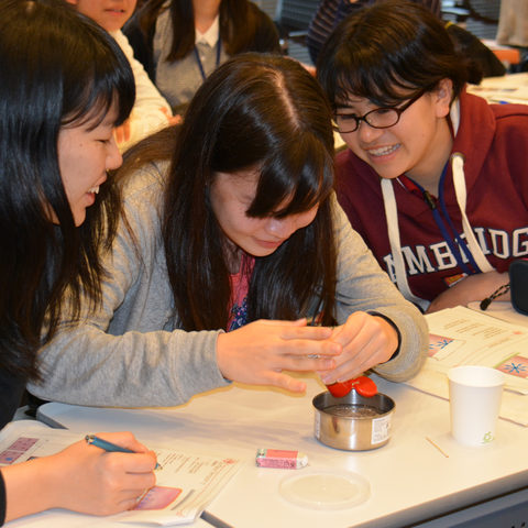 High school students from Okinawa experimenting with surface tension