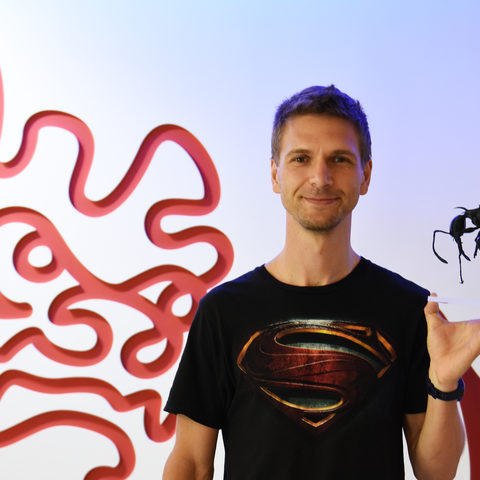 Dr. Georg Fischer, OIST post-doctoral scholar, holding an enlarged 3D printed version of Pheidole drogon