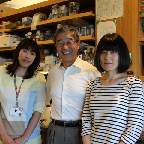 Prof. Yamamoto and Technical Assistants