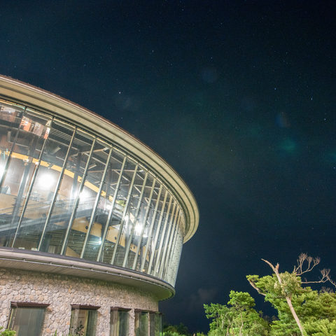 OIST Campus at Night