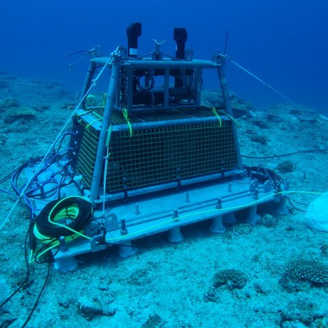 Main Node of the Ocean Observatory System