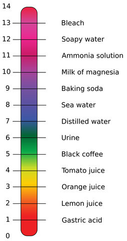 pH Values of Common Substances