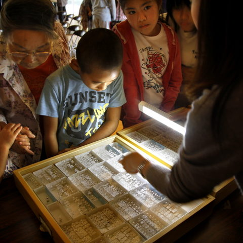 Hiroko Chibana looks at preserved ants with her grandchildren.