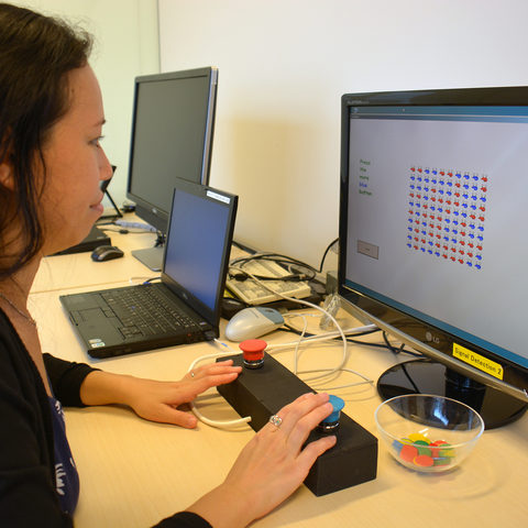 Dr Emi Furukawa, from the Human Developmental Neurobiology Unit, demonstrates the game used during the research.
