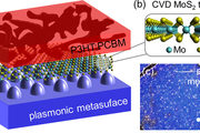 This figure depicts the organic semiconductor, in this case P3HT:PCBM in red, with a 2D MoS2 layer on a silver plasmonic metasurface.